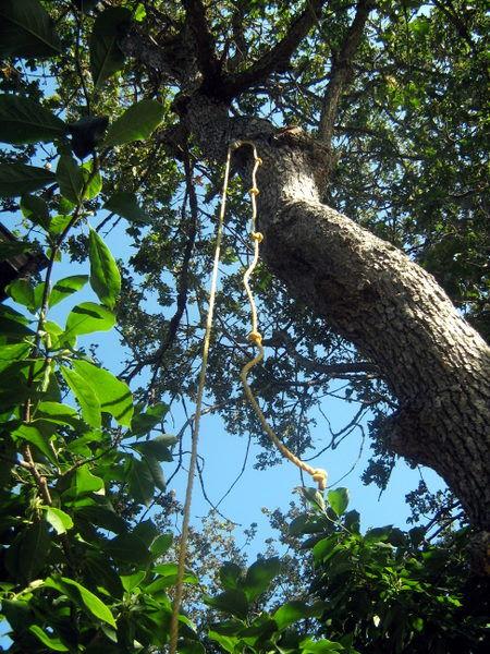 Домик на дереве своими руками