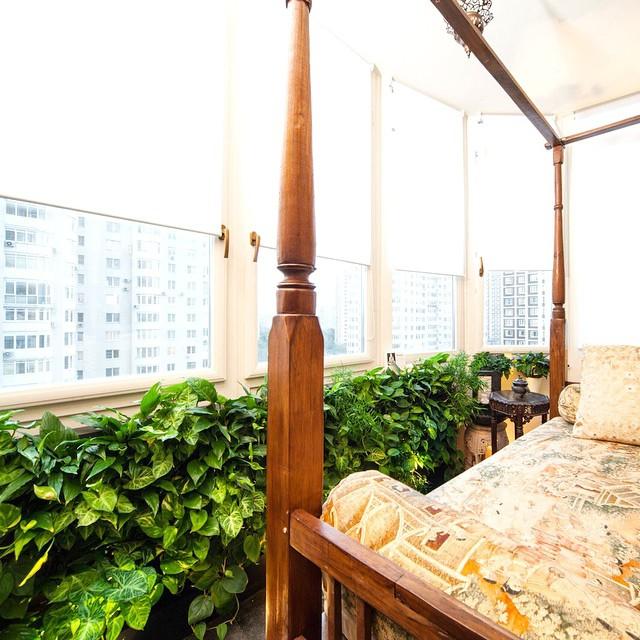 Зимний сад на балконе