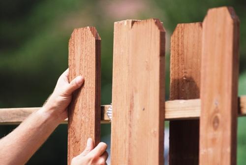 Деревянный штакетник. Выбор материала