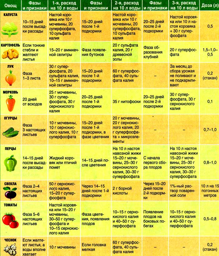 Чем удобрять огородишко весной